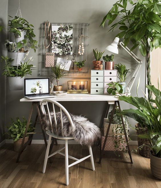 Jungle Desk