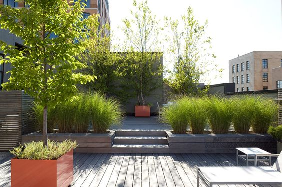 New York Roof Deck